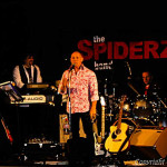 The Spiderz Band